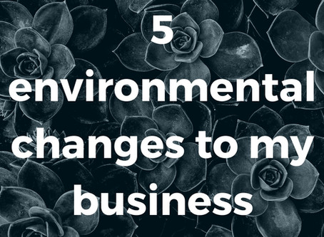5 ways I am taking responsibility for the environmental footprint of my business