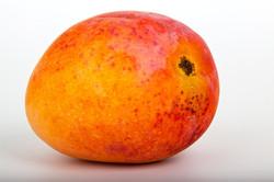 Mango Alphonso Fruit Extract