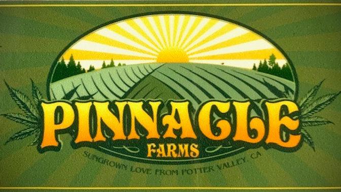 Pinnacle Farms - Purple Diesel 1/8th