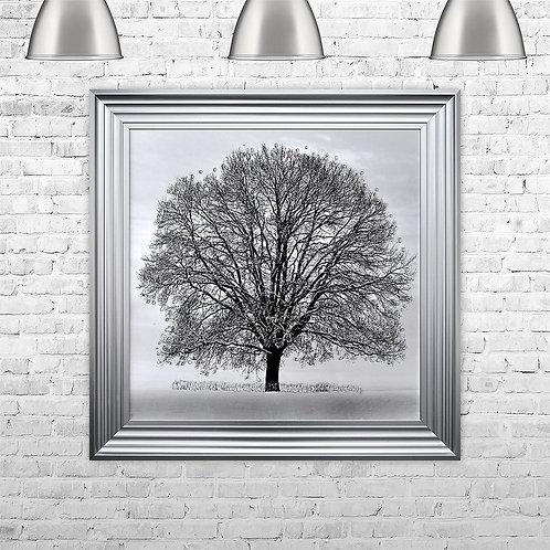 Winter Tree - 75 x 75 cm