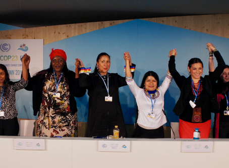 COP23 Response - We Will Not Negotiate On Mother Earth And Our Communities