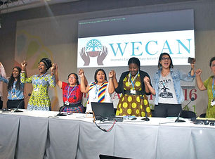 WECAN Advocacy At U.N. Climate Forums