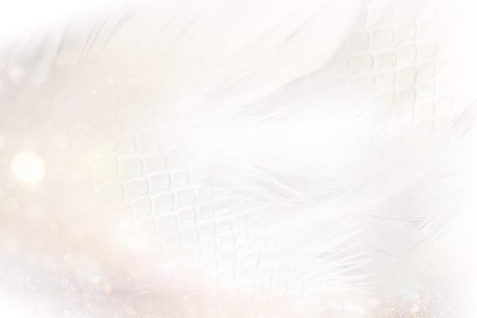 Sophia-Dragons-White-777-2.jpg