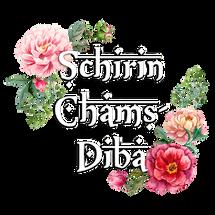 schirin-logo.png