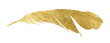 feather-gold_edited.png