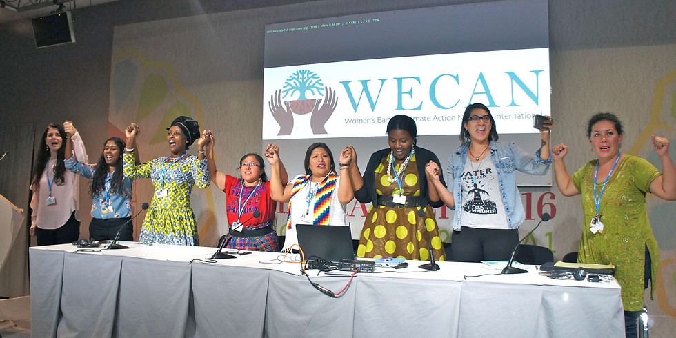 WECAN Women's Delegation at COP25 in Madrid