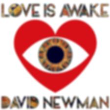 david-newman-love-is-awake.png