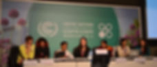 WECAN International efforts at COP19