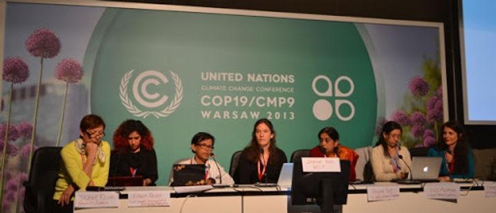 WECAN International efforts at COP19