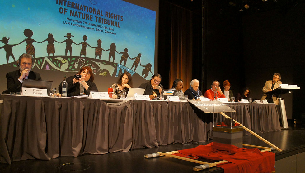 Tribunal judges at the 2017 International Rights of Nature Tribunal in Bonn, Germany - Photo via Emily Arasim/WECAN International
