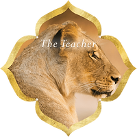 The-Teacher-Kaia-Ra.png