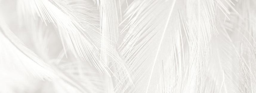 white-feathers-testimonials (1)-2.jpg
