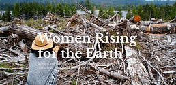 Earth Island Journal -  Women Rising For The Earth