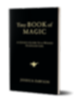 tinybookofmagic-mockup_small.png