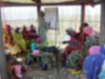 Neema Namadamu leads a WECAN/SAFECO training with local women leaders