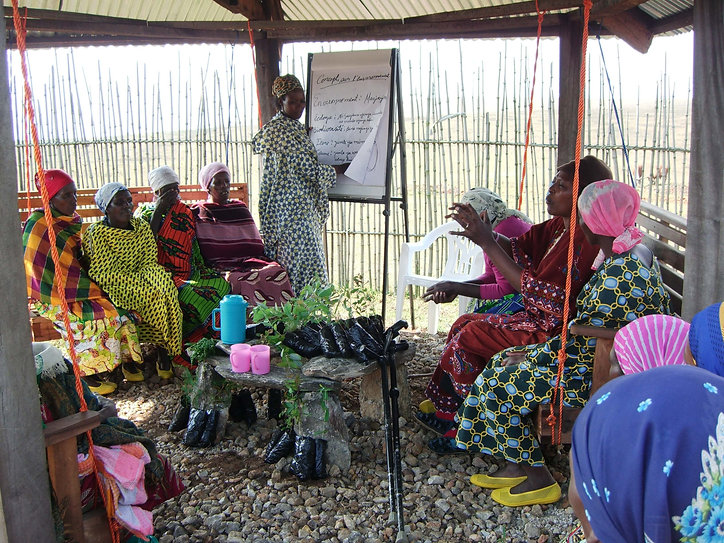Neema Namadamu leads a WECAN/SAFECO training with local women leaders