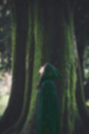 green-cape-notext.jpg