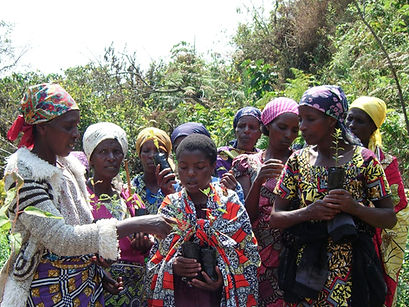 Women prepare to plant diverse tree species by hand