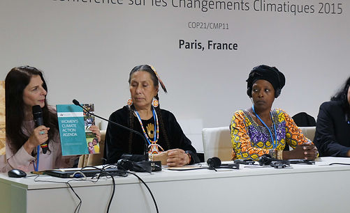 Osprey Orielle Lake presents the WCAA during the United Nation COP21 climate talks in Paris