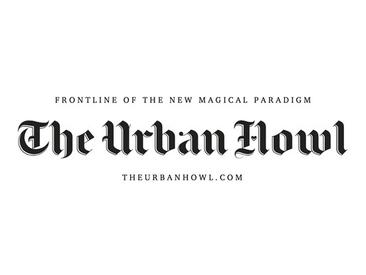THE URBAN HOWL ARTICLE