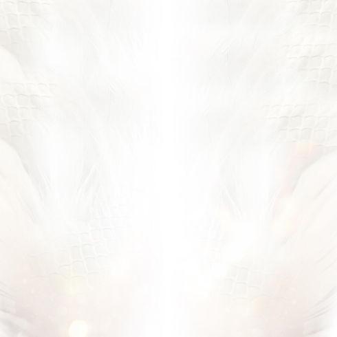 888-SOPHIA-DRAGONS-FLIGHT-DOWN-1.jpg