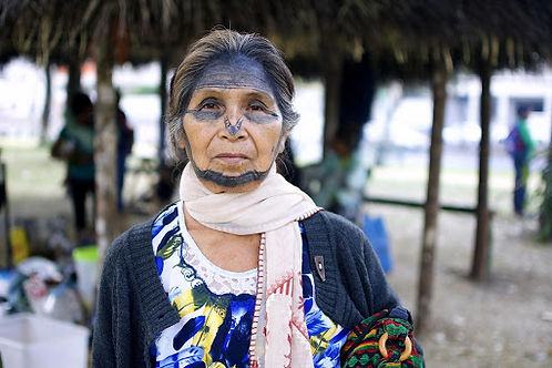Portrait of Narcisa Gualinga - via Sophie Pinchetti/WECAN International