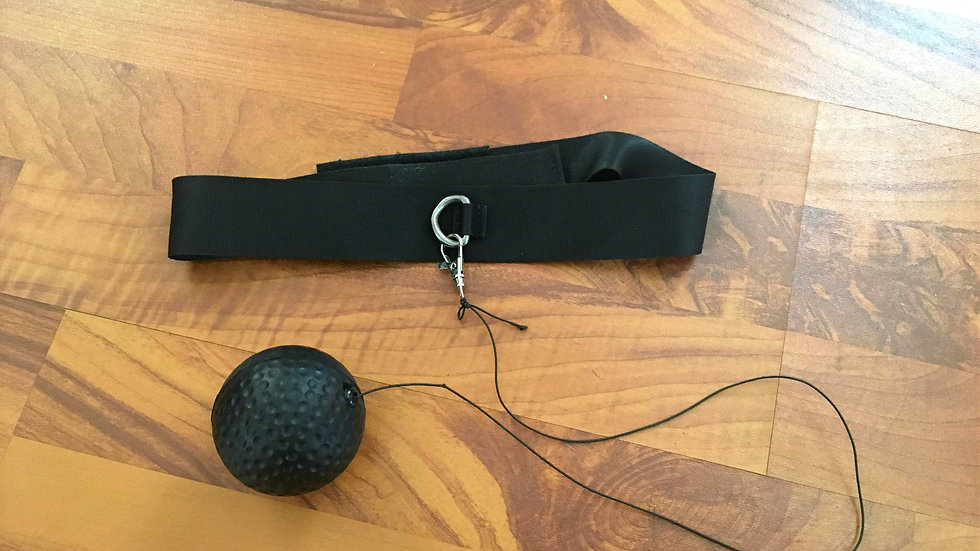 Cat Toy Training apparatus for boxing