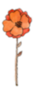 GIW.OrangePoppy.png