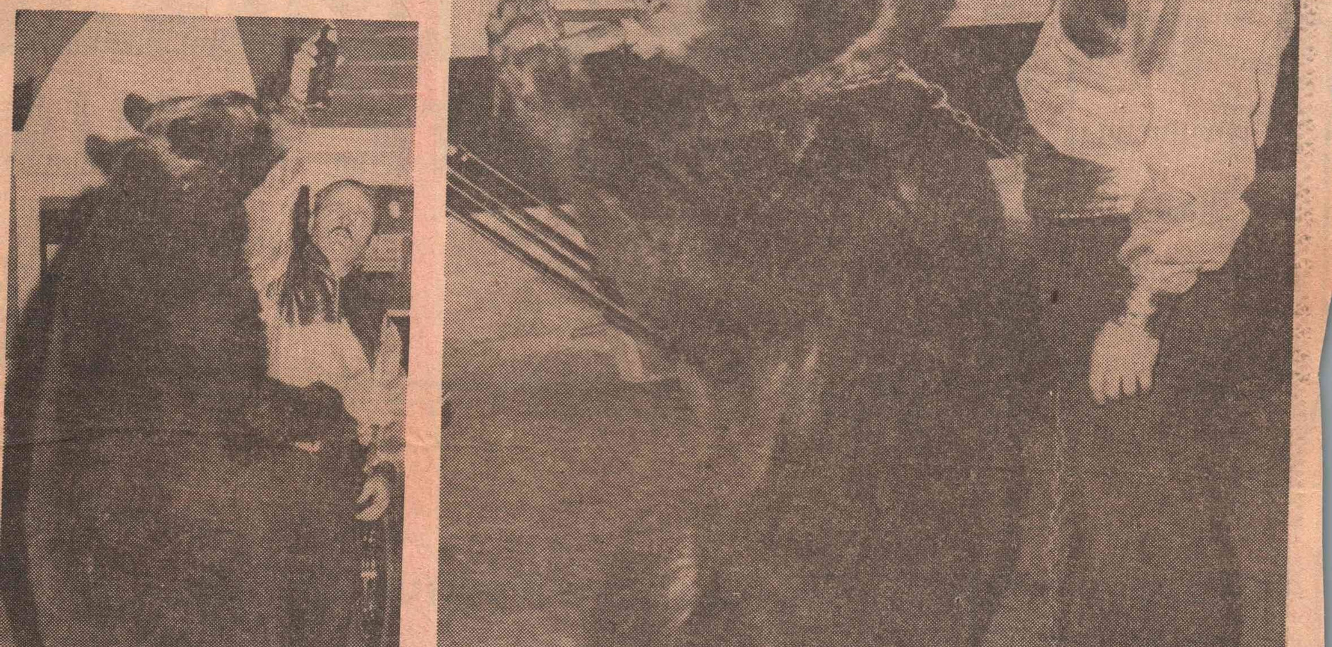 Newspaper Article - Victor the Rasslin B