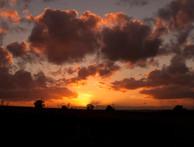 Bretby Sunset