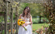 Bride making her way to her wedding