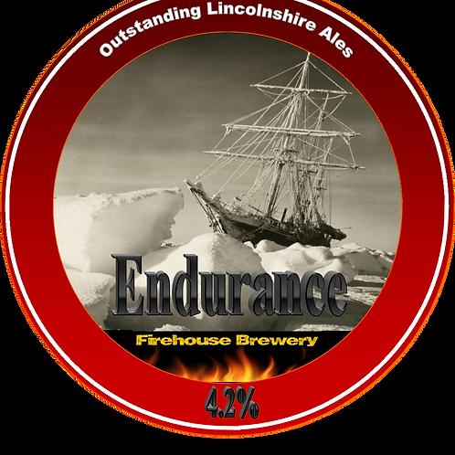 Endurance 4.2%