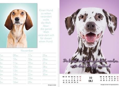 Charity Kalender für das Hunde Hospiz