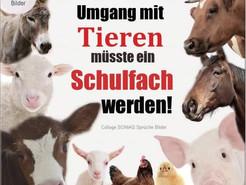 Respektvoller Umgang mit Tieren