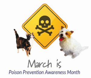 MARCH IS PET POISON PREVENTION AWARENESS MONTH