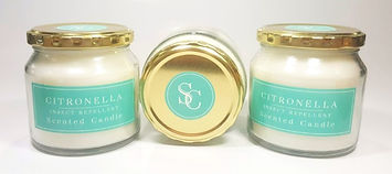 220g Citronelle Candle_edited.jpg