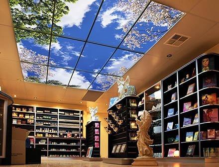 Fabric Stretch Ceilings