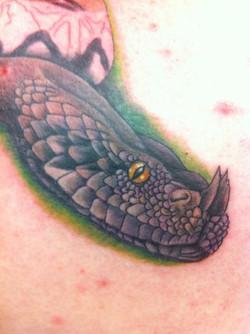 snake-head-2012