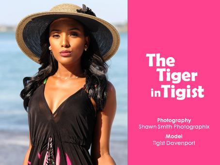PQs The Tiger in Tigist