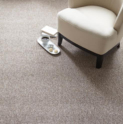 Prisma Carpet.png