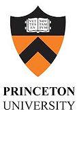 Princeton college essay help