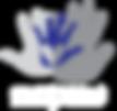 CVEC logo final 2017_WhiteFont.png