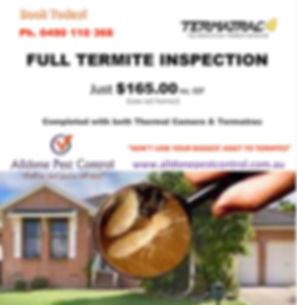 Termite Inspection Advertisement.jpg