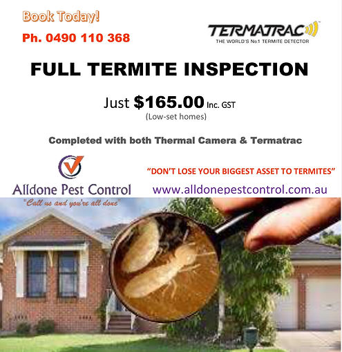 Termite Inspection Advertisement.jpg