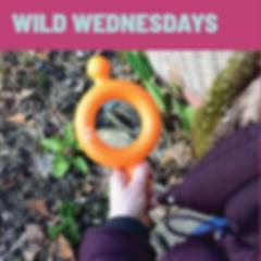 Wild Wednesdays Nature Walk 1.png