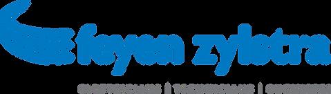 FZ Logo.png
