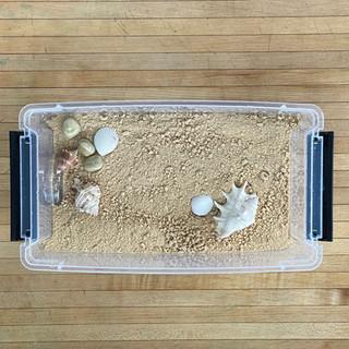 cereal sand beach