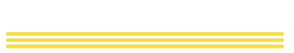 BlackLivesMatter_Logo_Horizontal REVERSE