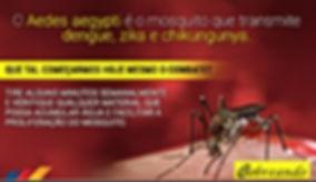 prevencao-dengue.jpg