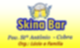 skina bar.png